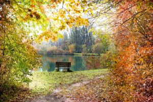 Laufbekleidung Herbst